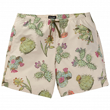 Шорты BURTON MB CREEKSIDE SHORT SS20 от Burton в интернет магазине www.b-shop.ru
